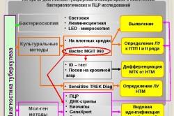 ПЦР диагностика туберкулеза