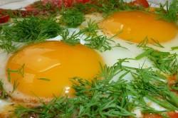 Яйца в рацион можно включать в любом виде