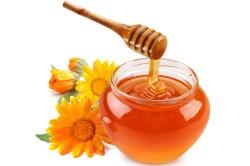 Мед при лечении туберкулеза